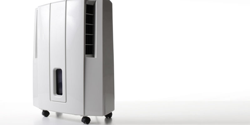 dehumidifier rental near me